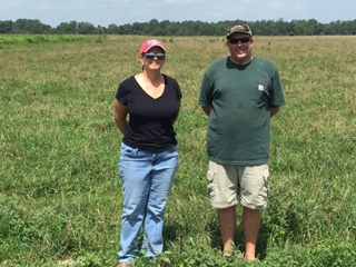 Pam Hoskins and Andy Cooper standing in recently seeded BarOptima fescue.