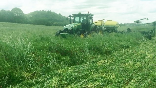 No-Tilling Corn into 5-way mix Cover Crop in Giles County